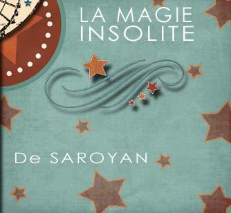 magicien,anniversaire,enfant,64,biarritz